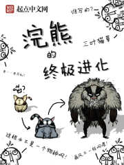 浣熊的终极进化 作者:三叶猫草