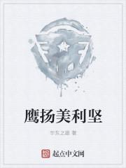 鹰扬美利坚 作者:华东之雄