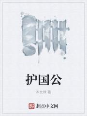 护国公 作者:木允锋