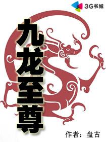 九龙至尊 作者:盘古