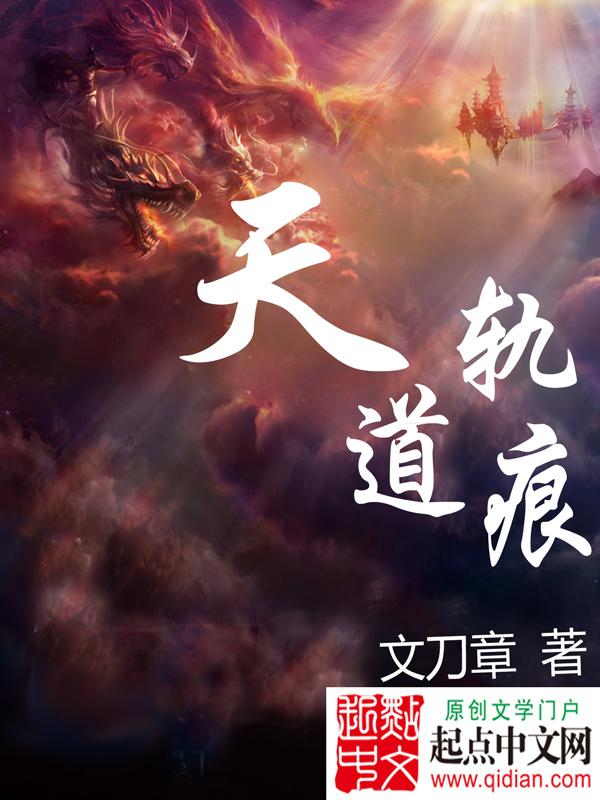 天道轨痕 作者:文刀章