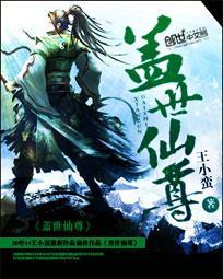 小说:盖世仙尊,作者:王小蛮