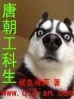 小说:唐朝工科生,作者:鲨鱼禅师