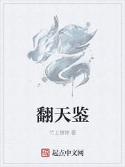 翻天鉴 作者:竹上猪猪