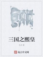小说:三国之熙皇,作者:名武