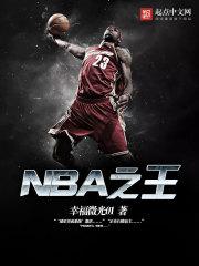 NBA之王 作者:幸福微光01