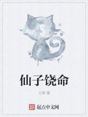 仙子饶命 作者:王袍